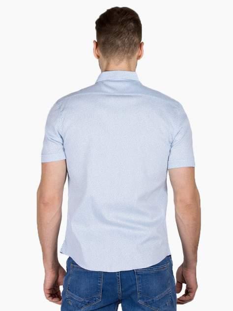 Рубашка мужская Dairos GD81100353 голубая L