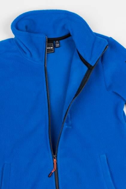 Флисовая толстовка для мальчика Icepeak, цв.синий, р-р 152