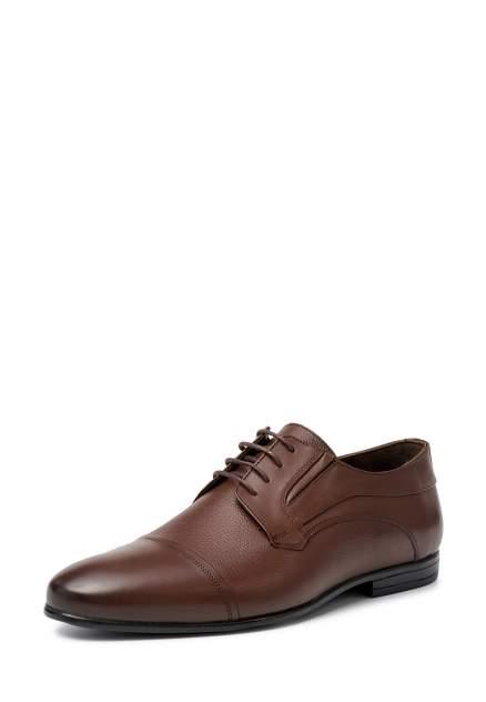 Туфли мужские Pierre Cardin 110598, коричневый