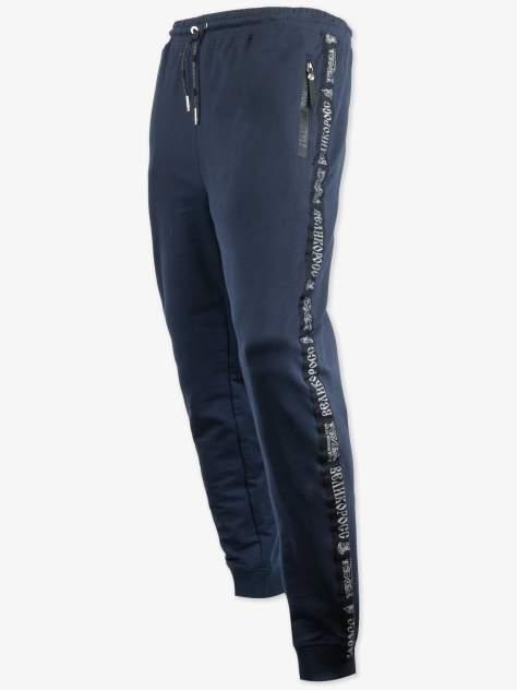 Спортивные брюки Великоросс 9, синий