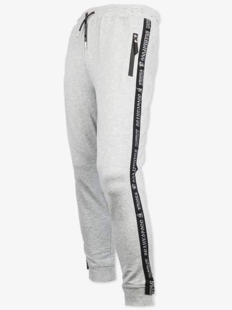 Спортивные брюки Великоросс 9, серебристый