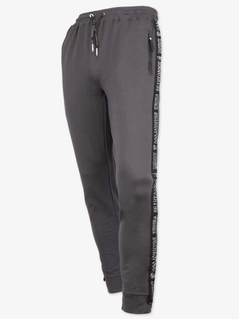 Спортивные брюки Великоросс 9, серый