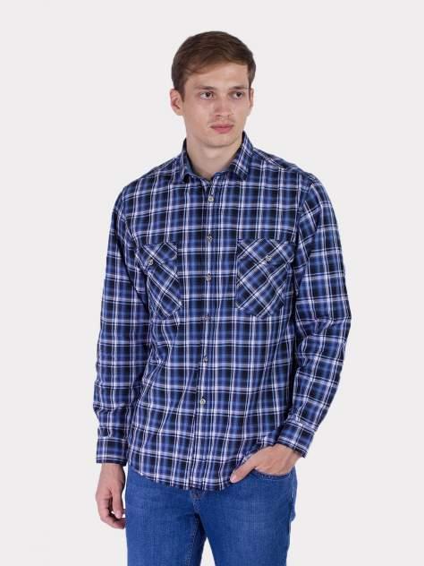Рубашка мужская DAIROS GD81100409, синий
