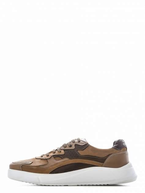 Кроссовки мужские quattrocomforto 1608-1-20 коричневые 42 RU