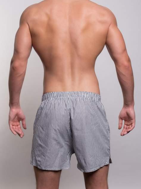 Боксеры мужские Sergio Dallini SG3310 серые L