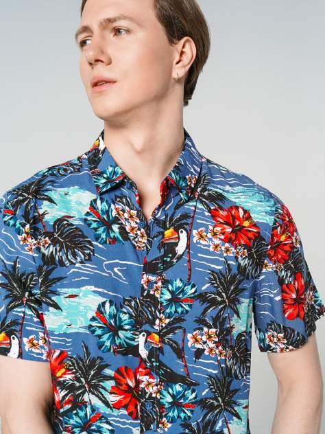 Рубашка мужская ТВОЕ A7934, розовый