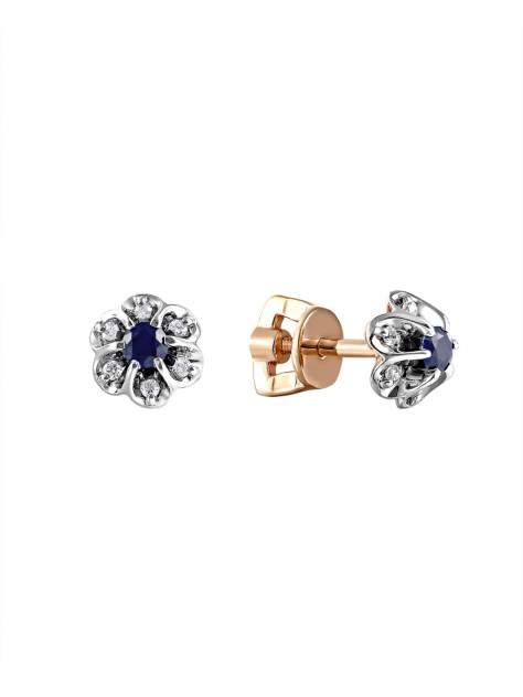 Серьги женские SamoroDki Jewelry 2-03-005-01з из серебра c сапфиром