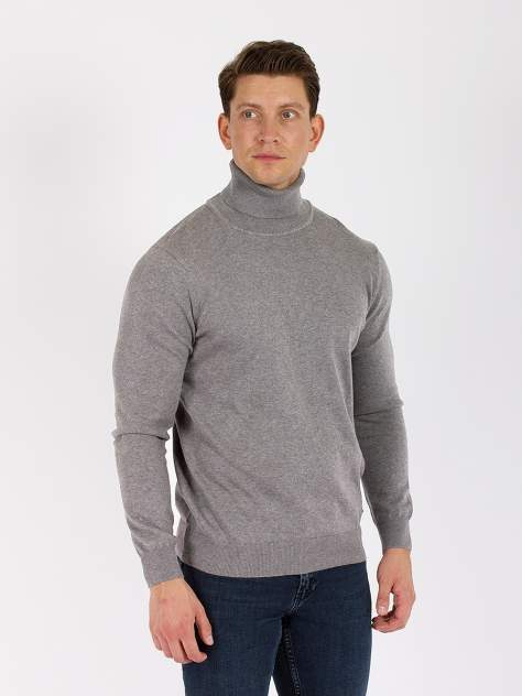 Водолазка мужская DAIROS GD69301018,  серый