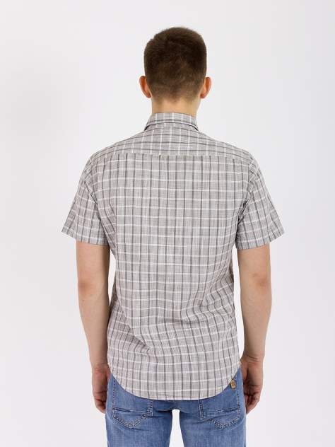 Рубашка мужская DAIROS GD81100429, серый