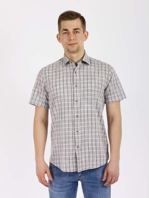 Рубашка мужская DAIROS GD81100429 серая M