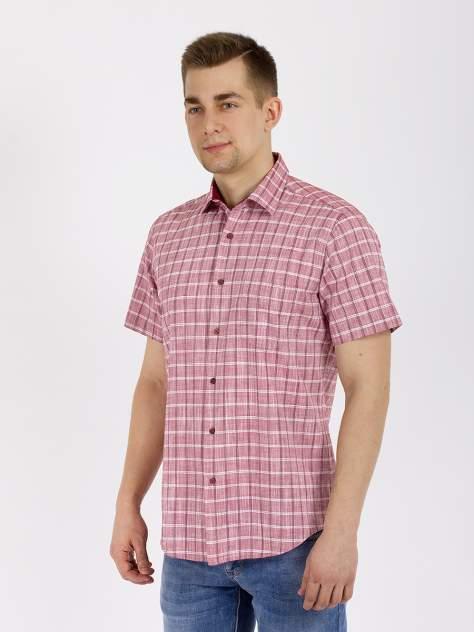 Рубашка мужская DAIROS GD81100429 красная XL