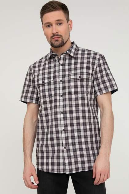 Рубашка мужская Finn Flare S20-22022, серый