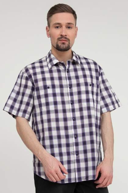 Рубашка мужская Finn Flare S20-22020, синий