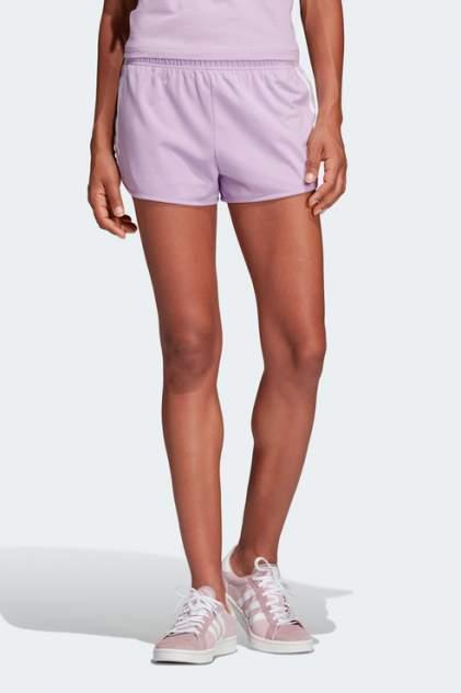 Шорты женские Adidas DV2558 фиолетовые 40