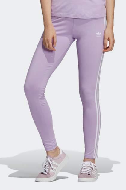 Леггинсы женские Adidas DV2610 фиолетовые 28