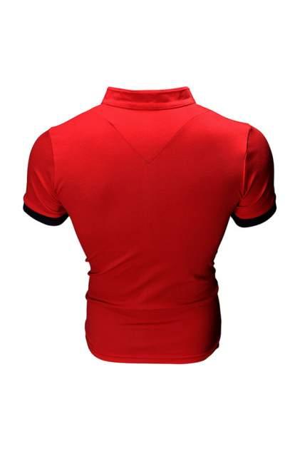 Футболка-поло мужская Envy Lab BY1 красная 5XL