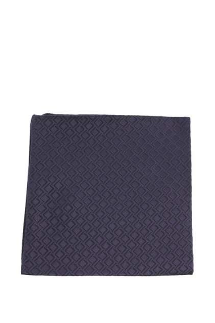 Шейный платок мужской Bitsiani 0974-917 синий