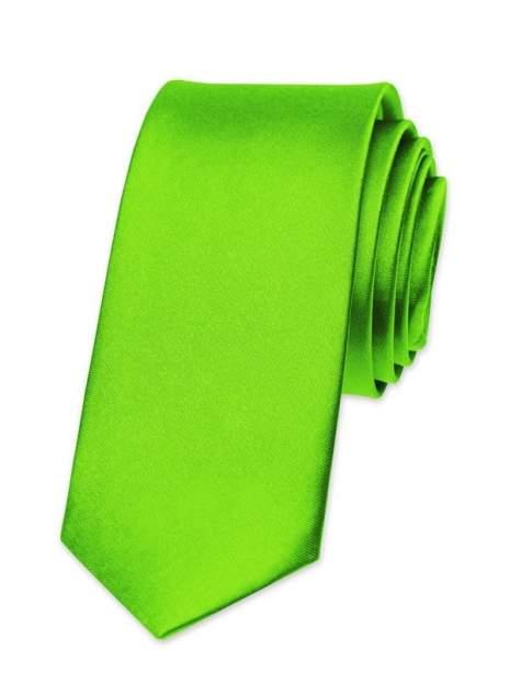Галстук мужской 2beMan G42 зеленый