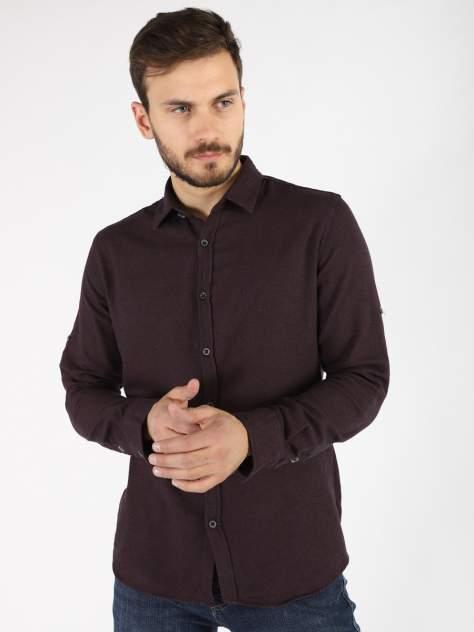 Рубашка мужская A passion play SQ65838, бордовый