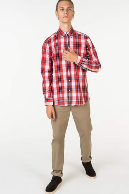 Рубашка мужская Westrenger WS1SM-18-57, красный