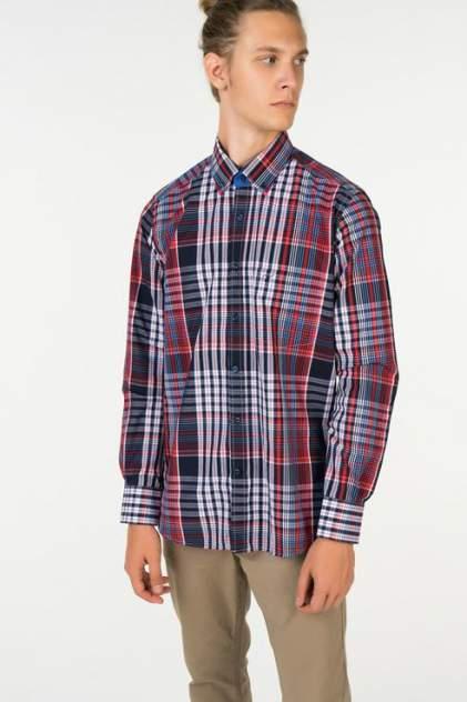 Рубашка мужская Westrenger WS1SM-18-20, разноцветный