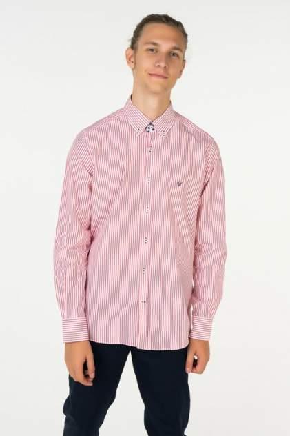 Рубашка мужская Westrenger WS1SM-18-28 красная 54