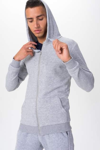 Толстовка мужская Envy Lab RB3, серый