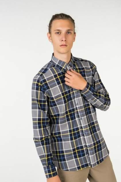 Рубашка мужская Westrenger WS1SM-18-23 разноцветная 50