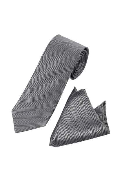 Комплект галстук+платок FAYZOFF-SA 1103S серый