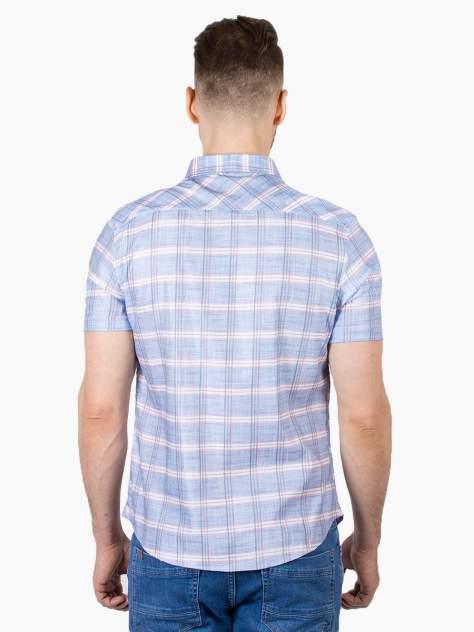 Рубашка мужская Dairos GD81100399 голубая 4XL