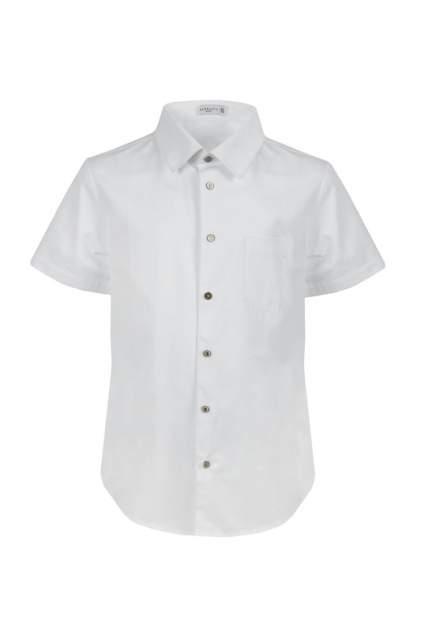 Рубашка STEFANIA 720001 р.152