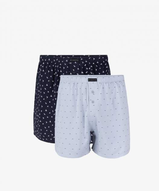 Набор панталонов мужской АTLANTIC 2MBX-005 разноцветный L