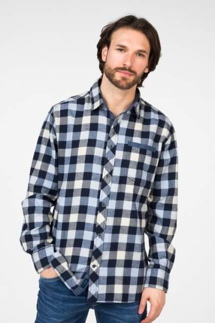 Рубашка мужская BROADWAY 20101570, разноцветный