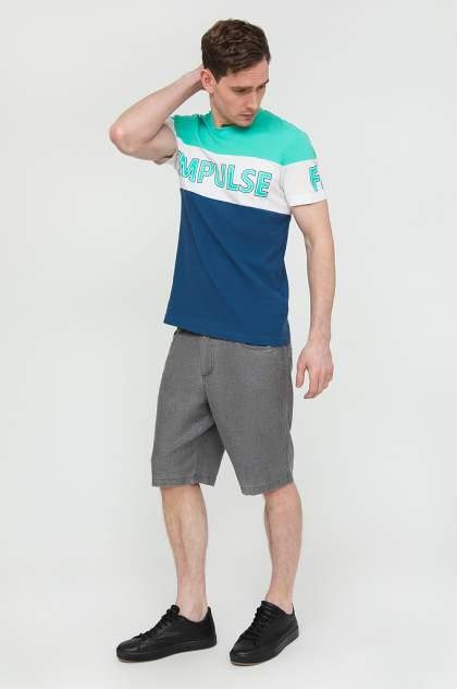 Футболка мужская Finn Flare B20-23019 синяя 3XL