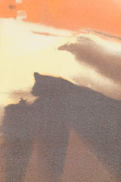 Платок женский F.FRANTELLI P19090044-NV желтый