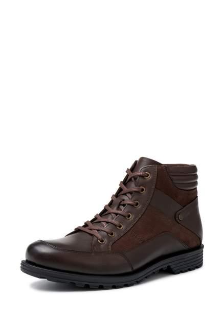 Мужские ботинки Pierre Cardin 26007340, коричневый