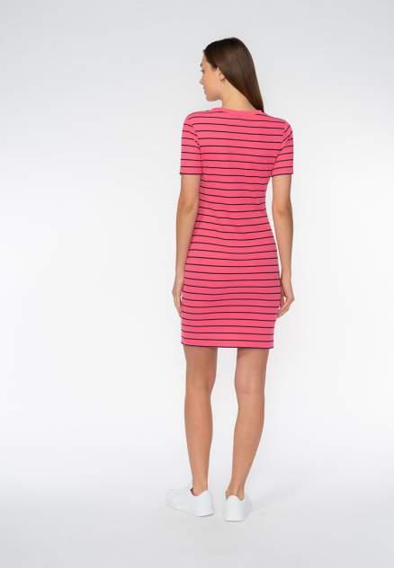 Платье женское Modis M201W00719A433 розовое 42; 44