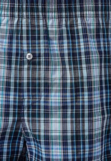 Трусы мужские Modis M182U00119 голубые 46