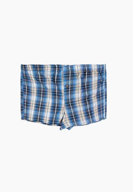 Трусы мужские Modis M201U00649 голубые 48