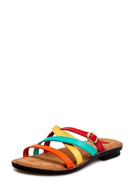 Шлепанцы T.Taccardi 00906120, разноцветный