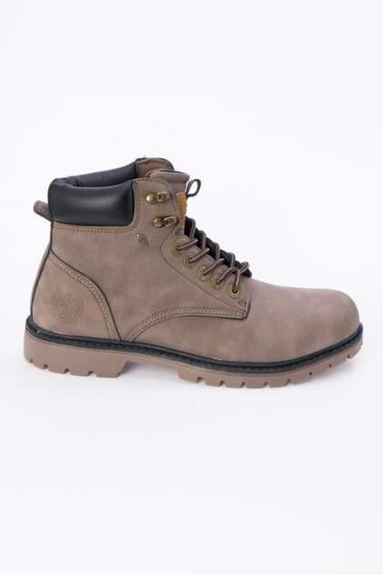 Мужские ботинки British Knights B42-3695, коричневый