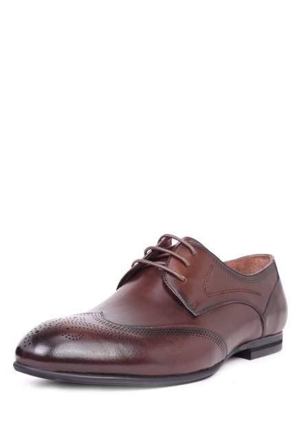 Туфли мужские Pierre Cardin 710017789, коричневый