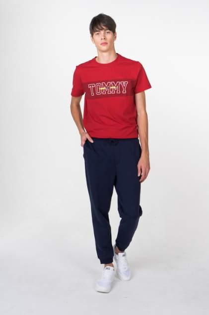 Брюки мужские Tommy Jeans DM0DM05119 синие L