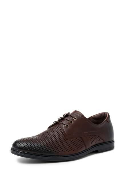 Туфли мужские Alessio Nesca M6108026, коричневый
