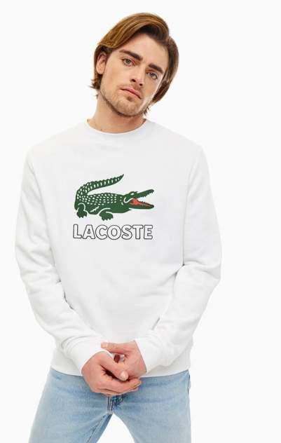 Свитшот мужской Lacoste  56