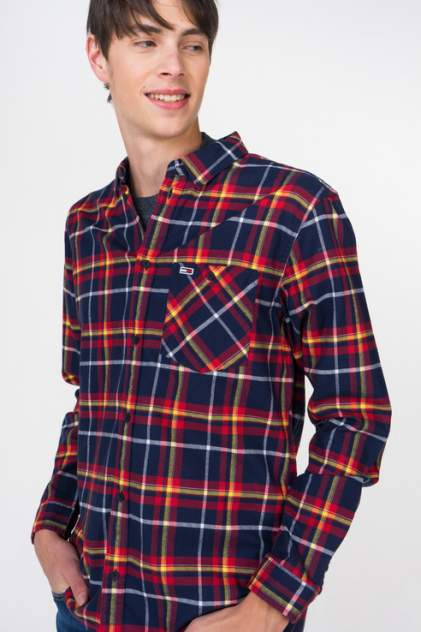 Рубашка мужская Tommy Hilfiger DM0DM05458, синий
