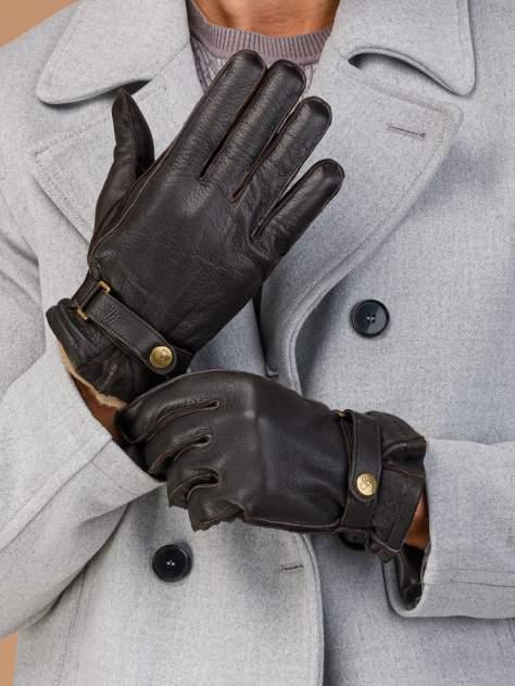 Перчатки мужские Eleganzza HS200-B коричневые 10