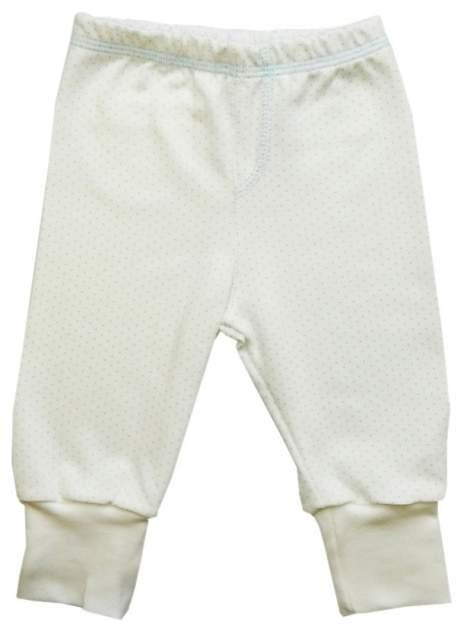 Ползунки - штанишки Папитто с карманом горошек р.20-56 143-04