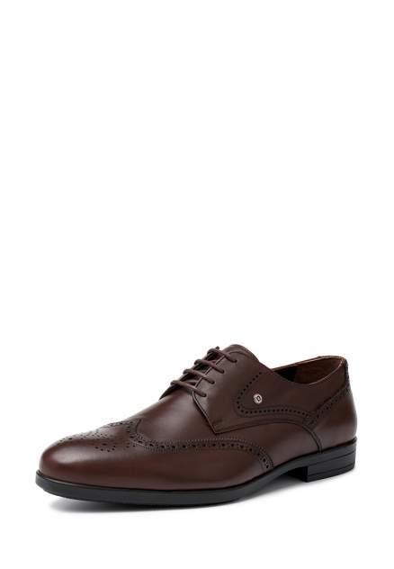 Туфли мужские Pierre Cardin 03407020, коричневый