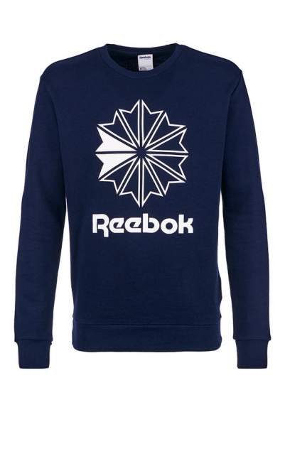Толстовка мужская Reebok DT8121, синий